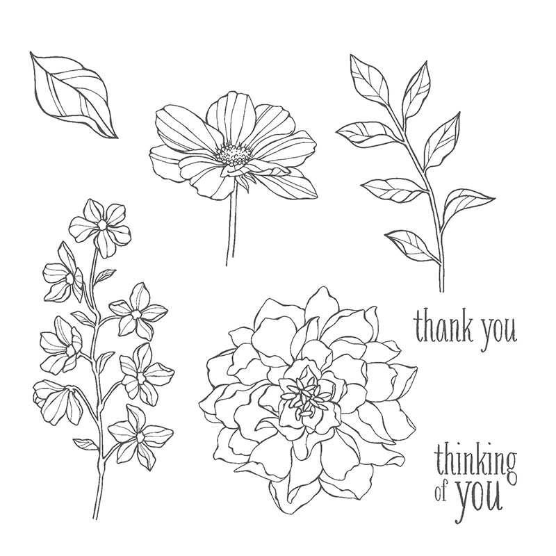 Stampin' Up! Peaceful Petals stamp set