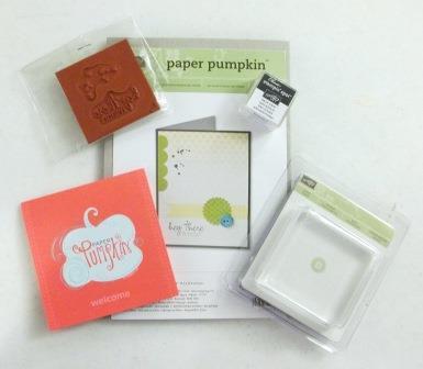 My Paper Pumpkin Contents