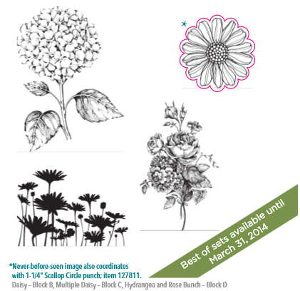 Stampin' Up! March Best of 25 Promotion