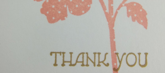 Handmade Thank You Card in Crisp Cantaloupe