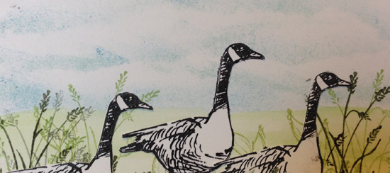 Creating with the Wetlands Stamp Set