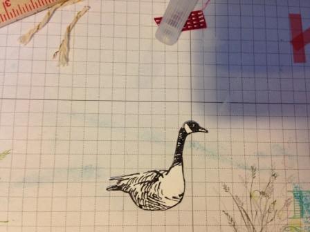 Wetlands Goose stamp