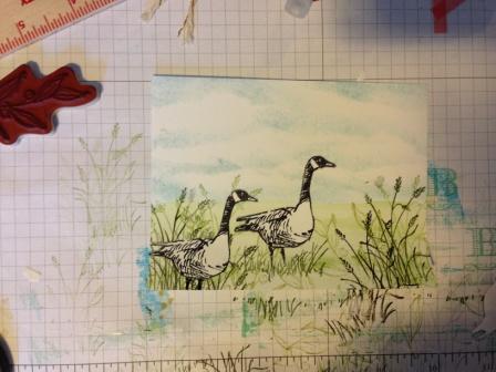 Stampin' up! Wetlands stamp set