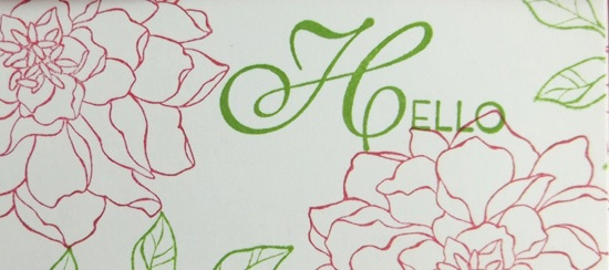 Peaceful Petals Apron Card