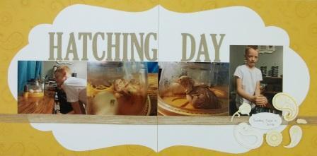 Hatching Day scrapbook layout