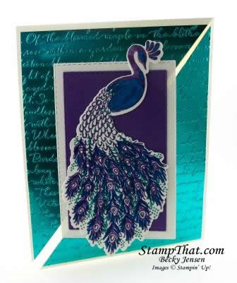 Royal Peacock from Stampin' Up!