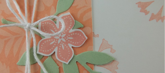 Sweet Sorbet Card & New Product