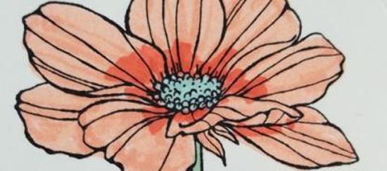Peaceful Petals & Sweet Sorbet