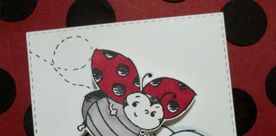 Little Ladybug Step It Up Card