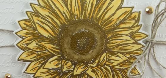 Celebrate Sunflowers Handmade Card