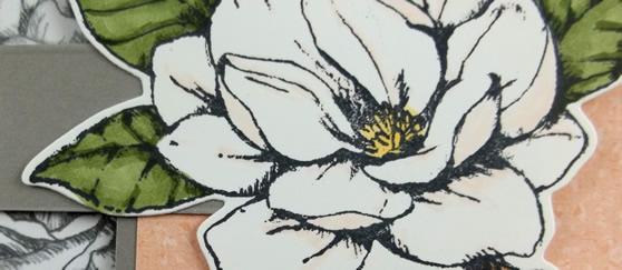 Good Morning Magnolia Fancy Folds Card