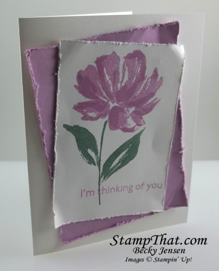 Fresh Freesia Stampin' Up! In Color
