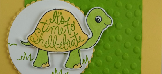 Turtle Friends – It's Time to Shell-ebrate