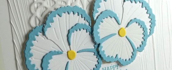 White and Blue Pansy Card