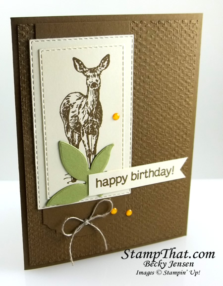Stampin' Up! Nature's Beauty