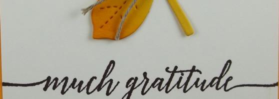 Much Gratitude Handmade Card
